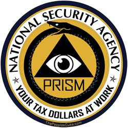 nsa prism alternative logo