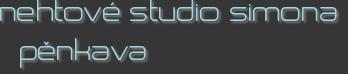 nehtové studio simona pěnkava