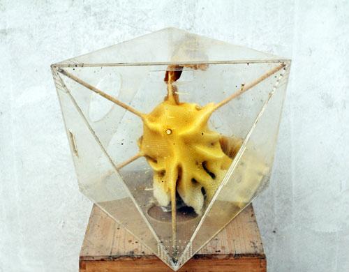 bienenstock-skulpturen von ren ri