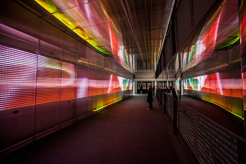 miguel chevalier: sensory tunnel installation